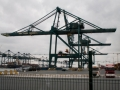 Port of Antwerp-9
